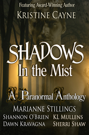 marianne stillings shadows in the mist